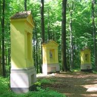 las-bukowy-droga-krzyzowa-4