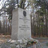 las-widok-pomnik-eichendorffa-1