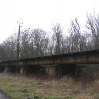 lasy-siechnickie-wiadukt-kolejowy-1.jpg