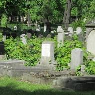 legnica-cmentarz-zydowski-6