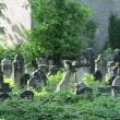 legnica-cmentarz-zydowski-1