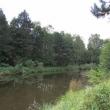 ue-lesne-stawki-kolo-goszcza-08