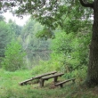 ue-lesne-stawki-kolo-goszcza-09