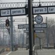 lesnica-stacja-21