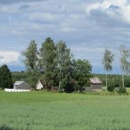 lesno-wyb-i-07