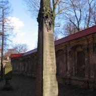 leszno-kosciol-sw-krzyza-lapidarium-18.jpg