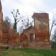 ubowice-ruiny-palacu-5