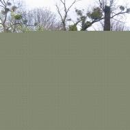 ubowice-dawny-cmentarz-kapliczka-2