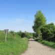 malczyce-droga-338-01