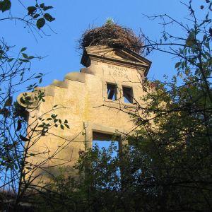 maniow-wielki-ruiny-palacu-3