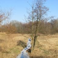 mekarzowice-3