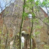 miechowice-olawskie-ruiny-kosciola-8