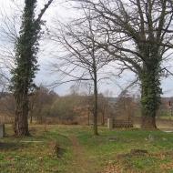 miedzyborz-cmentarz-ewangelicki-03