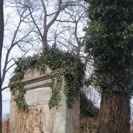 miedzyborz-cmentarz-ewangelicki-11