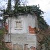 miedzyborz-cmentarz-ewangelicki-12