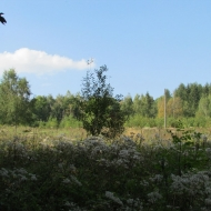 milkow-rozdroze-pod-grabowcem-03