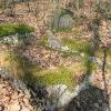 niwki-ksiazece-dawny-cmentarz-2