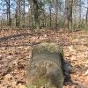 niwki-ksiazece-dawny-cmentarz-5