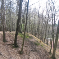 obora-arboretum-1