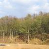 obora-arboretum-4