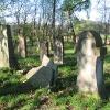 olesno-cmentarz-zydowski-3