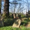 olesno-cmentarz-zydowski-5