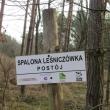 orzeszkow-rez-uroczysko-wrzosy-16