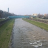 ostrawa-rzeka-ostrawica
