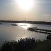 paprocany-wschod-jezioro-paprocanskie-3