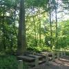 pszczyna-park-zamkowy-groby-anhaltow-1