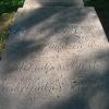 pszczyna-park-zamkowy-groby-anhaltow-7