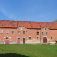 pielaszkowice-ruiny-palacu-folwark-4