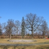plawniowice-palac-park-1