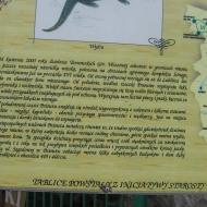 pniowiec-tablica-1