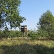 polana-jablonka-rez-zabor-15