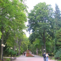 polanica-zdroj-aleja-w-parku.jpg