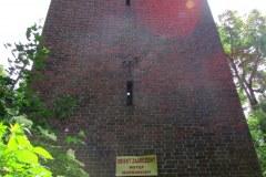 Powidzko-ruiny-kosciola-ewangelickiego-1