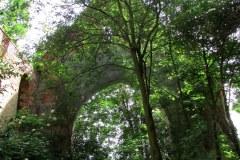 Powidzko-ruiny-kosciola-ewangelickiego-3