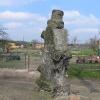 proszkow-kosciol-kamienne-drzewo