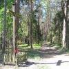 pruskow-krzyz-w-lesie