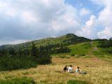 przelecz-brona-widok-na-mala-babia-gora-3.jpg