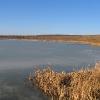 przyszowice-jezioro-farskie-1