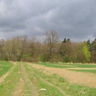 rezerwat-lezczok-widok-3