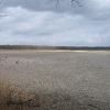 rezerwat-lezczok-staw-salm-duzy-2