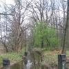 rezerwat-lezczok-struga
