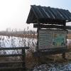 nowa-kuznia-rezerwat-staw-nowokuznicki-1