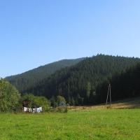 rycerka-gorna-kolonia-widok-na-praszywka.jpg