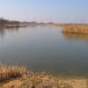 rzeczyce-jezioro-07