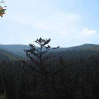 safarova-skala-widok-na-borowkowa-3.jpg