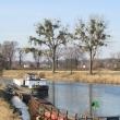 scinawa-polska-marina-11